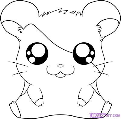 baby hamster coloring pages cute baby hamster coloring pages colorings net