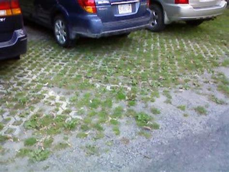 eco friendly car wash ecofriend