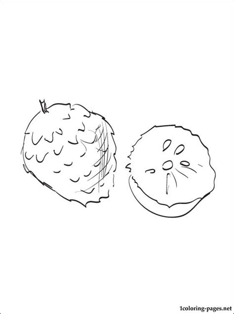 custard apple coloring page custard apple coloring page to print out coloring pages