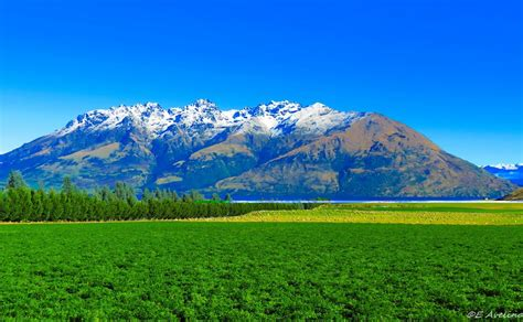Landscape Photos New Zealand Panoramio Photo Of Landscape New Zealand