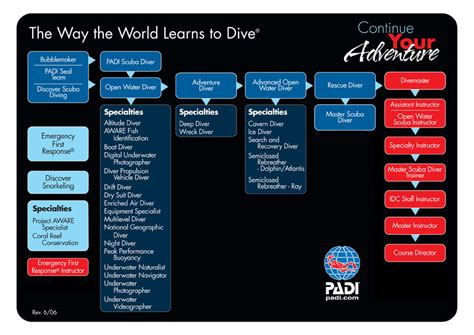 padi dive courses from open water diver to course director
