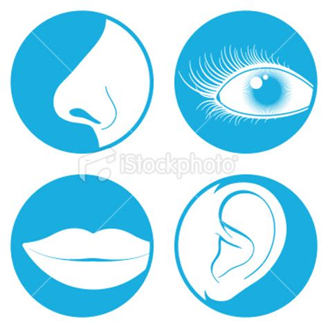 Eye And Nose And Mouth Clipart 20 Free Cliparts Download