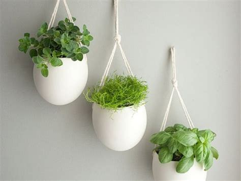 hanging herbs the best pots for an indoor herb garden for the home
