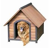 Dog House PNG Image  PngPix