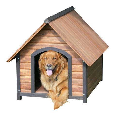 house of dog dog house png