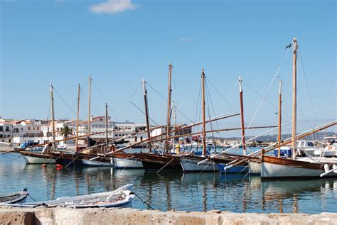 capitaneria di porto sant antioco domenica 14 luglio a calasetta la 1 170 giornata ecologica
