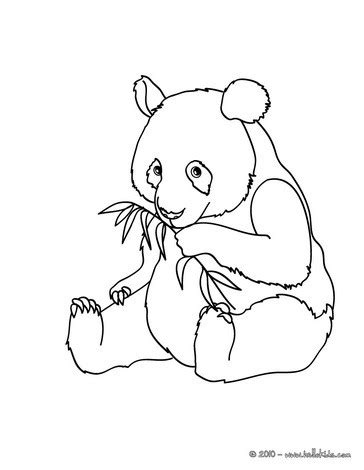 giant panda coloring pages hellokids