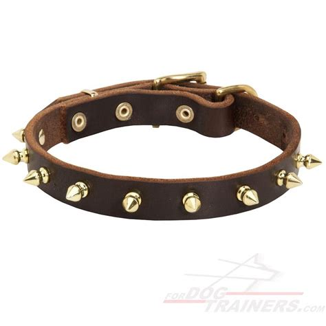 leather spiked collars chic walking spiked leather corso collar c111 1073 3 4 in leather collar brass