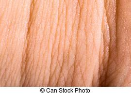 picture of up human skin macro epidermis texture csp17528076 search stock photography up human skin macro epidermis texture