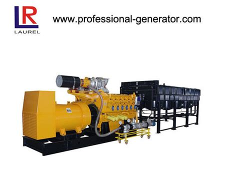 professional biography generator energy efficient natural gas generators 1500rpm 1000kw bio