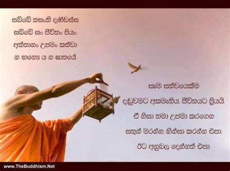 biography meaning in sinhala sinhala quotes about buddhism quotesgram
