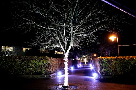 Outdoor Lighting Hire Outdoor Lighting Hire Cambridge Building Lighting Safety Lighting Hire For All Events