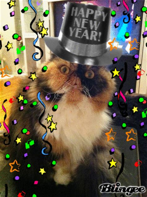 cat happy new year picture 130598611 blingee