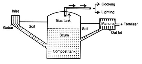 schematic structure biography biogas power plant diagram www imgkid com the image