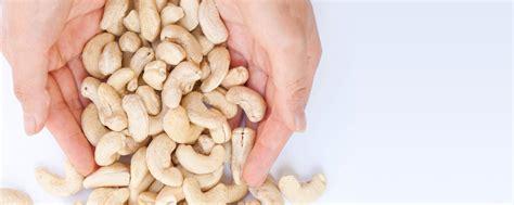 Kacang Mente Kacang Mede Goreng jual kacang mete di jember soebroto cici indah cargo
