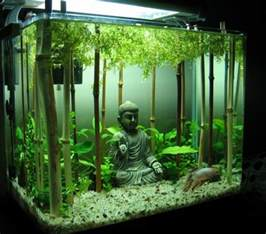 Bamboo Aquascape Top 10 Amazing And Unusual Themed Fish Tanks