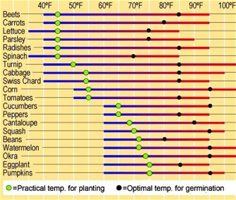 vegetable and herb seed germination chart charts seeds herb seed planting guide chart on soil temperatures