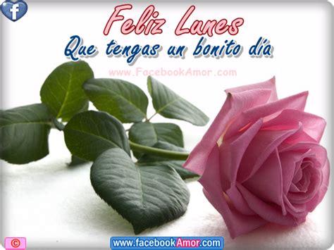 imagenes de feliz lunes con rosas im 225 genes con flores y frases de fel 237 z lunes para compartir