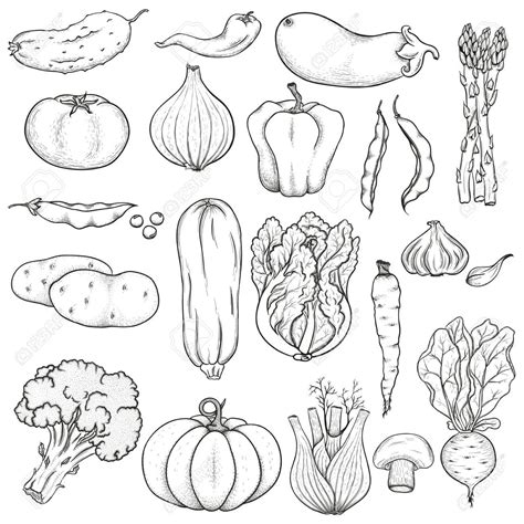 vegetables clipart black and white clipart vegetables black and white search mfm