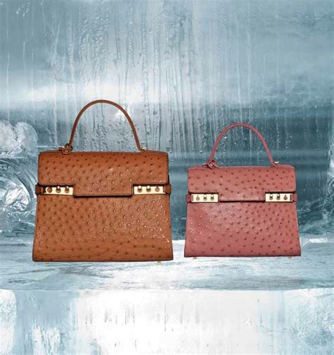Delvaux Tempete Ostrich Bag delvaux fall winter 2014 bag collection spotted fashion