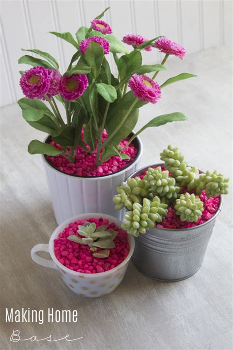 Pink Planter Pots by Succulent Planters With Neon Pink Pebbles
