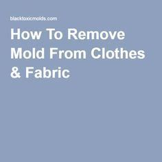 How To Clean Mold From Upholstery by 1000 Ideas About Remove Mold Stains On Remove Mold Stains And How To Remove
