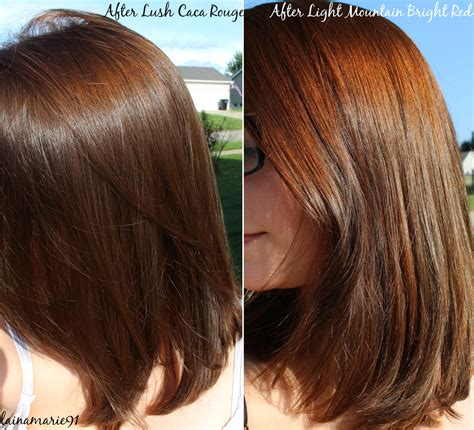henna color lab light brown henna on light brown hair www imgkid com the image kid