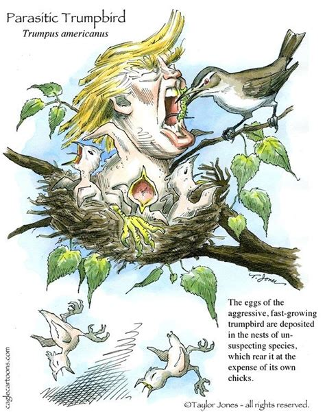 70 best images about american political cartoons on pinterest