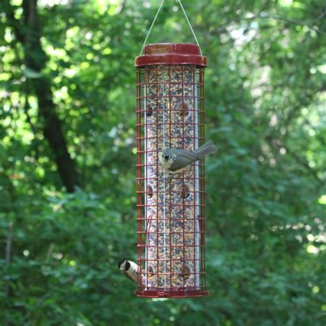 perky pet 102 squirrel resistant easy feeder home garden
