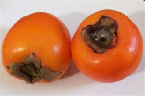 Kaki Frucht Gesund by Kaki Eine Gesunde Frucht