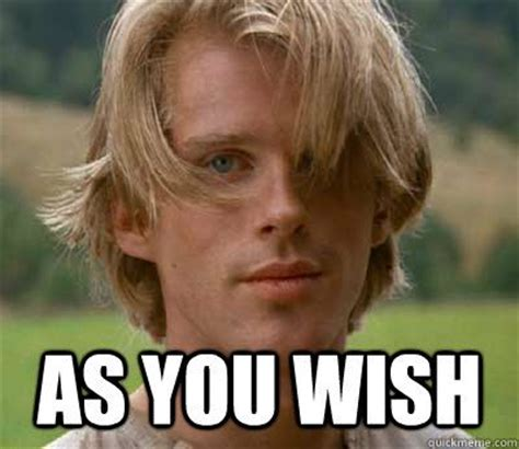 Wish Meme - as you wish princess bride people i find neato pinterest