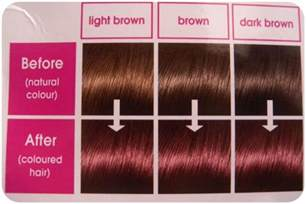 reddish brown hair color chart asian mahogany hair image hairstyle 2013