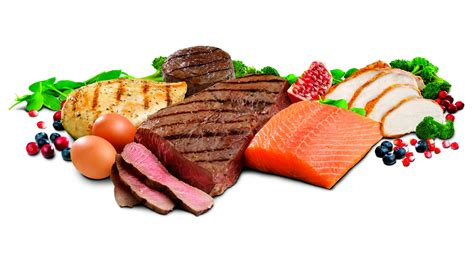 protein for proteins amino acids food and supplements