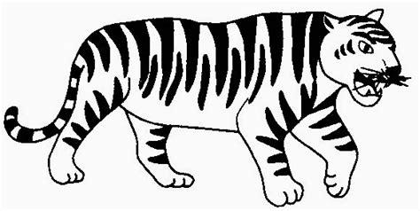 gambar hitam putih macan  keren gambar pixabay