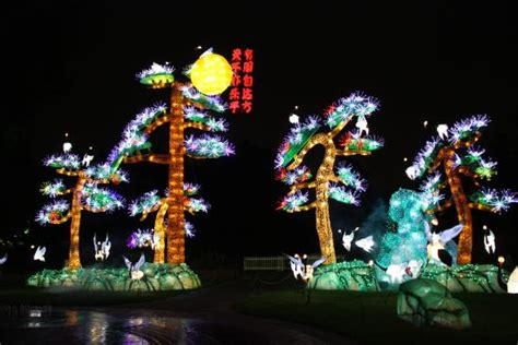 Botanical Garden Lantern Festival Lantern Festival