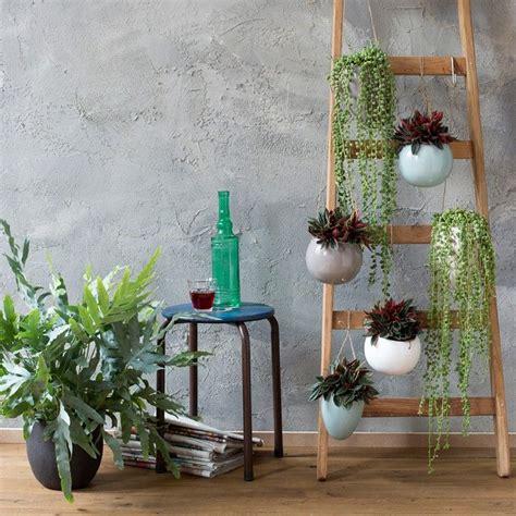 xenos hangplant meer dan 1000 idee 235 n over groene decoratie op pinterest