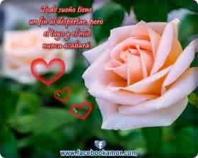 imagenes de rosas rojas con frases de buenos dias im 225 genes y frases con flores imagenes con frases para