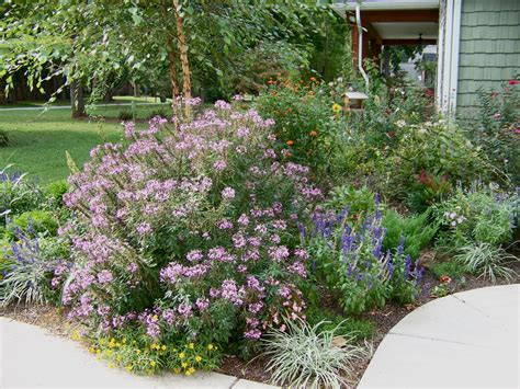 flower bed decoration surprising flower bed ideas front of house decorating