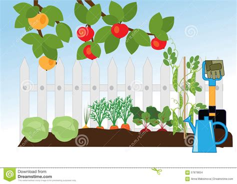 garden fruits and vegetables s a fruit and vegetable garden stock vector image 57879654