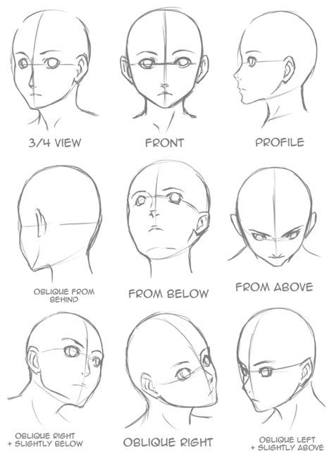 Drawing 3 4 Faces by Drawing Heads On Andrew Loomis Anatomy