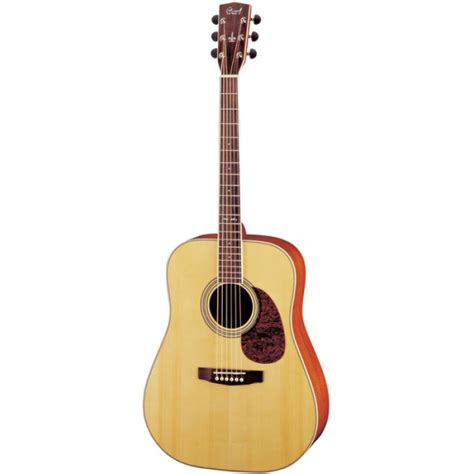 cort earth 200 acoustic guitar