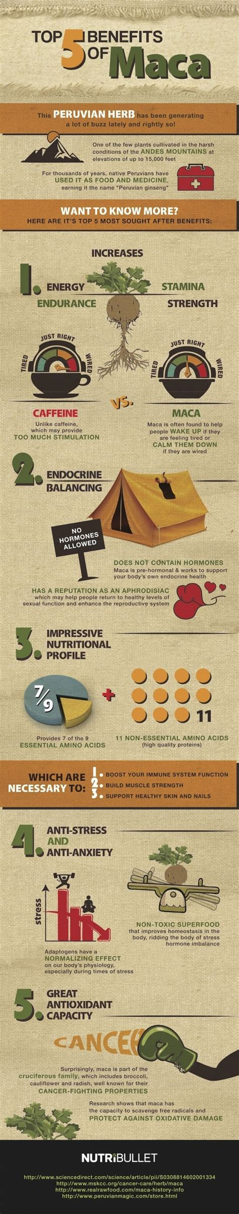 best maca top 5 benefits of maca infographic health tips