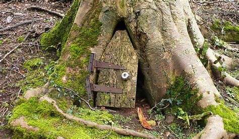 Tree With A Door by Two And A Farm Future Project Door In A