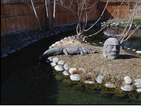 Alligators   Miracle Hot Springs  Buhl Idaho
