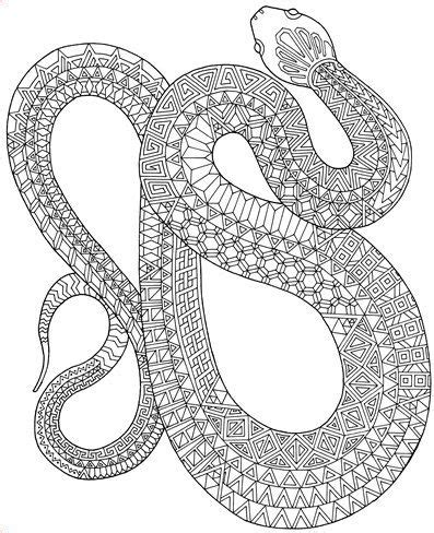 snake coloring page pdf zanimals snake coloring page adult coloring book pages