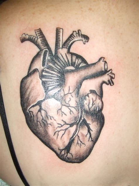 anatomical heart tattoo designs tattoos designs ideas and meaning tattoos for you