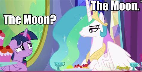 Princess Celestia Meme - s6e6 no second prances everypony