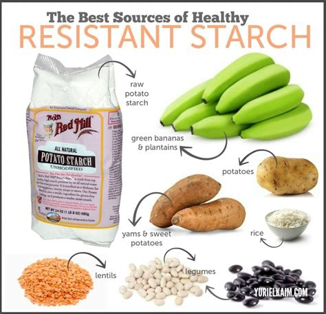 carbohydrates starch resistant starch thyroid and hormone treatment