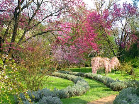 giardino di ninfa roma sull oasi di ninfa roma italy digital rainbow