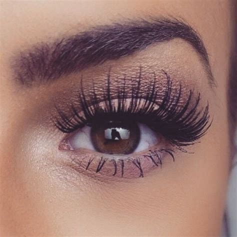 best lashes 17 best images about eyelash extensions on